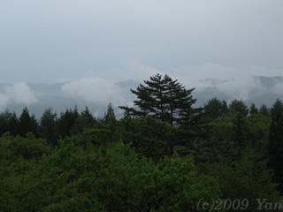 旅のきろく・ホテルの部屋から望む緑と雲[PowerShot A590 IS]