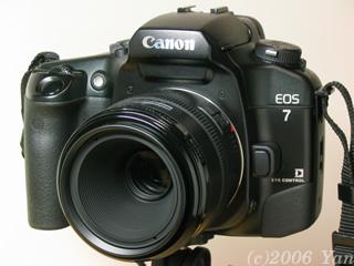 EOS7 + EF50mm F2.5 コンパクトマクロ[PowerShotA70]