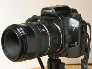 EOS7 + ライフサイズコンバーターEF + EF50mm F2.5 コンパクトマクロ[PowerShotA70]