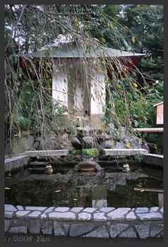 天龍寺のカエル[KLASSE S, F4.0, 1/90, TREBI 100C]