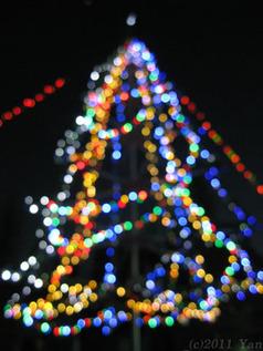 クリスマスな写真[PowerShot A590 IS]