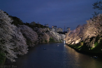 千鳥ヶ淵の桜[EOS M3, EF-M18-55mm F3.5-5.6 IS STM(39mm), Av, F5.0, 1/25, ISO 3200, PS:風景]